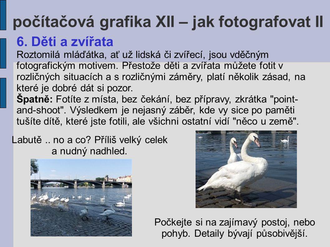 počítačová grafika XII – jak fotografovat II Lépe: Když fotíte děti nebo zvířata, nebojte se přidřepnout si.