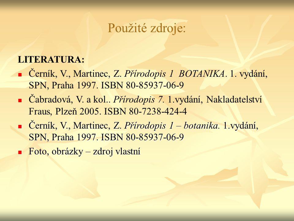 Použité zdroje: LITERATURA: Černík, V., Martinec, Z.