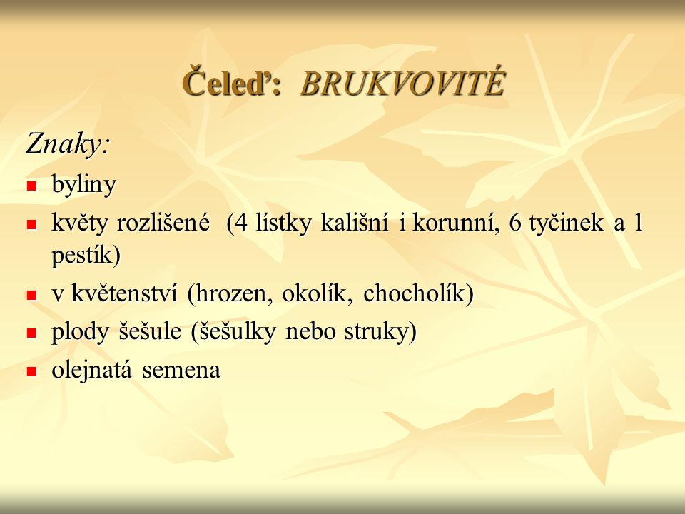 Čeleď: BRUKVOVITÉ Znaky: byliny byliny květy rozlišené (4 lístky kališní i korunní, 6 tyčinek a 1 pestík) květy rozlišené (4 lístky kališní i korunní, 6 tyčinek a 1 pestík) v květenství (hrozen, okolík, chocholík) v květenství (hrozen, okolík, chocholík) plody šešule (šešulky nebo struky) plody šešule (šešulky nebo struky) olejnatá semena olejnatá semena