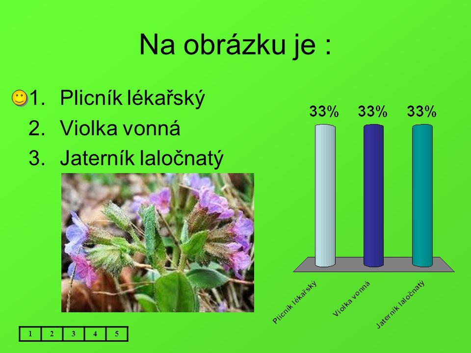 Téma: Rostliny na jaře Použitý software: držitel licence - ZŠ J.