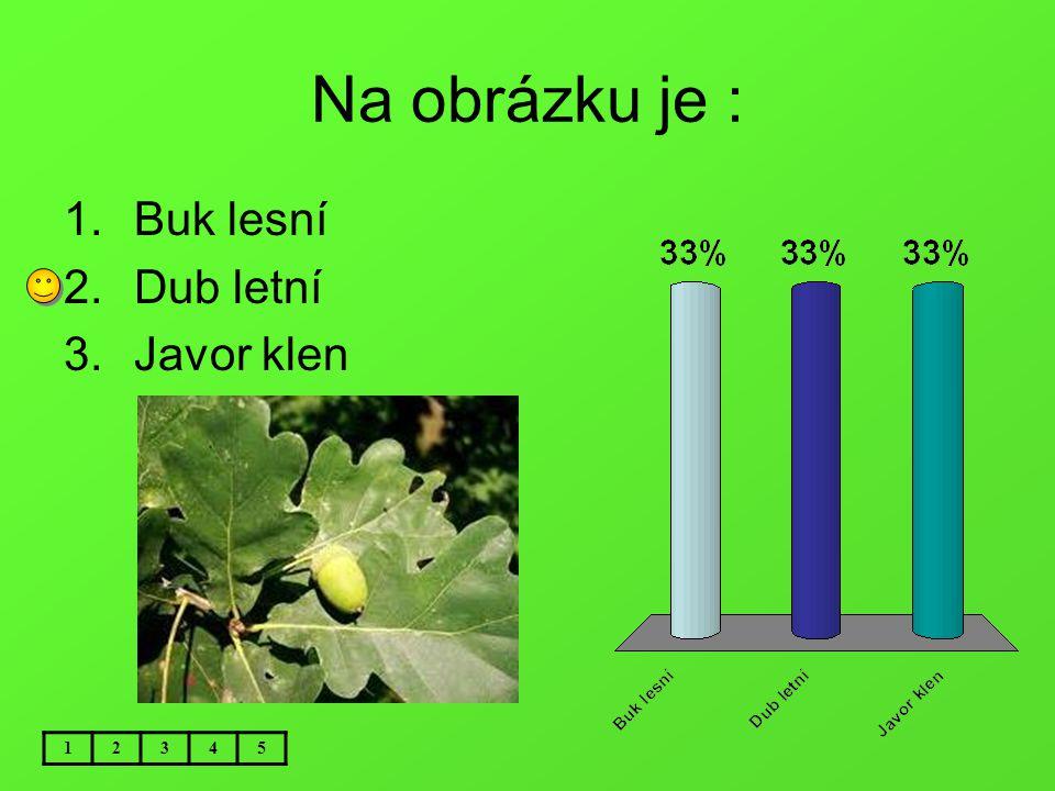 Na obrázku je : 12345 1.Buk lesní 2.Dub letní 3.Javor klen