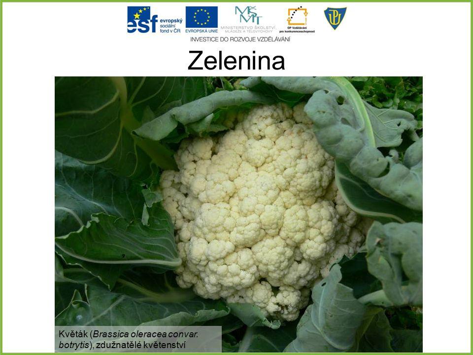 Zelenina Květák (Brassica oleracea convar. botrytis), zdužnatělé květenství
