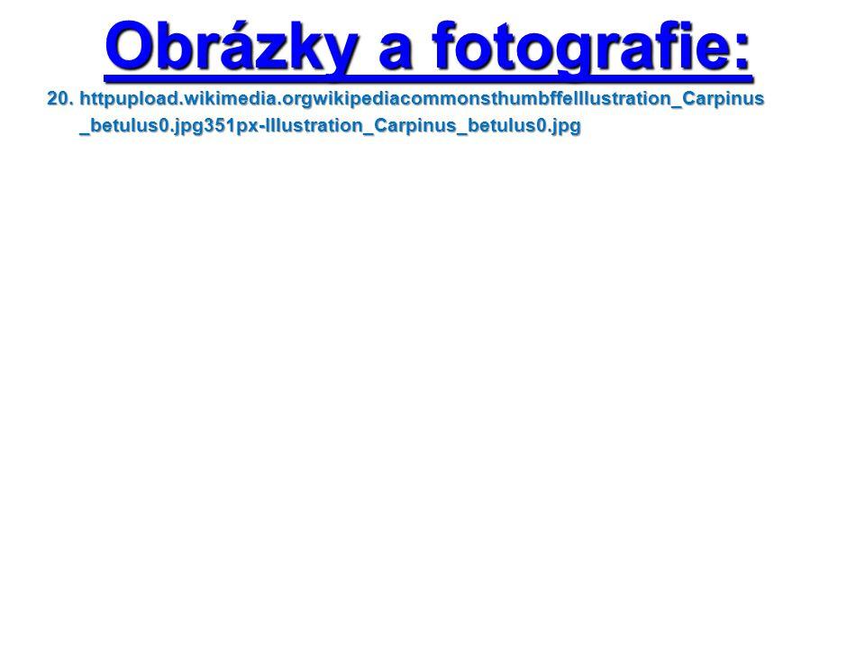 Obrázky a fotografie: 20. httpupload.wikimedia.orgwikipediacommonsthumbffeIllustration_Carpinus 20.