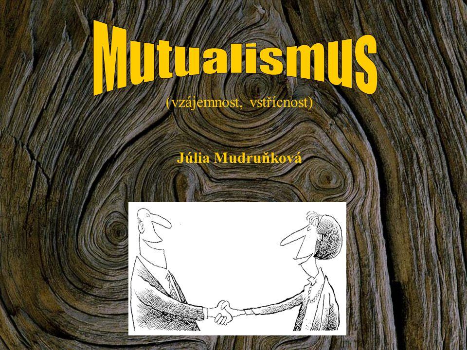 (vzájemnost, vstřícnost) Júlia Mudruňková