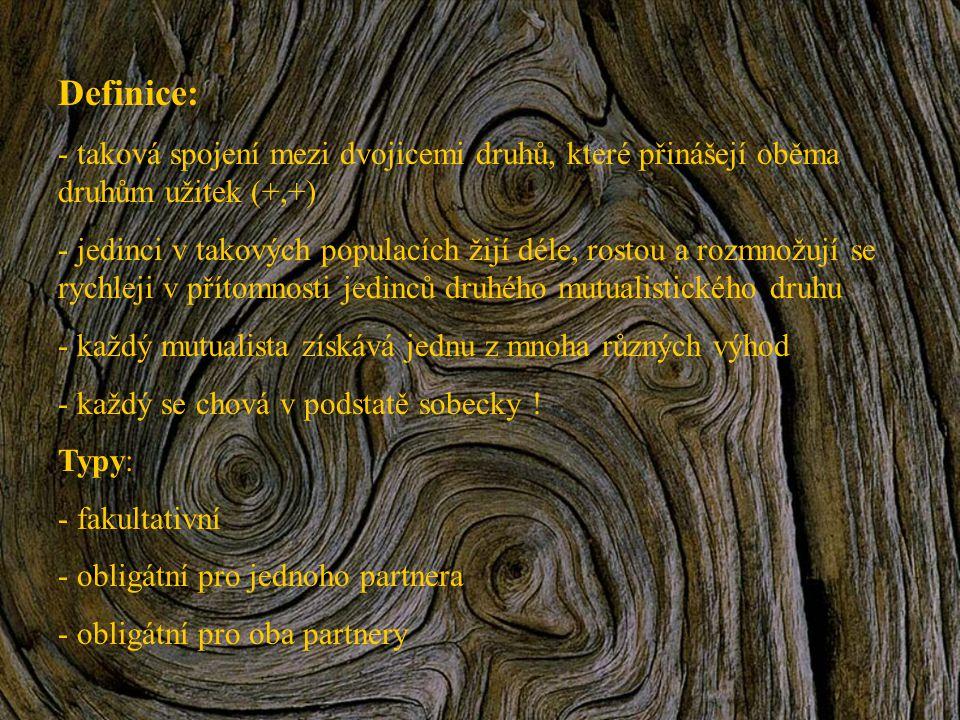 Mutualismy vedoucí ke vzniku vzájemných vazeb chování Medozvěstka křiklavá (Indicator indicator) a medojed kapský (Mellivora capensis) Garnáti (r.