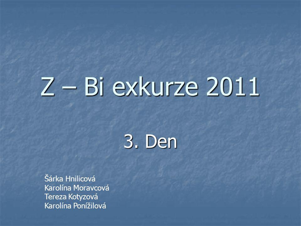Z – Bi exkurze 2011 3. Den Šárka Hnilicová Karolína Moravcová Tereza Kotyzová Karolína Ponížilová