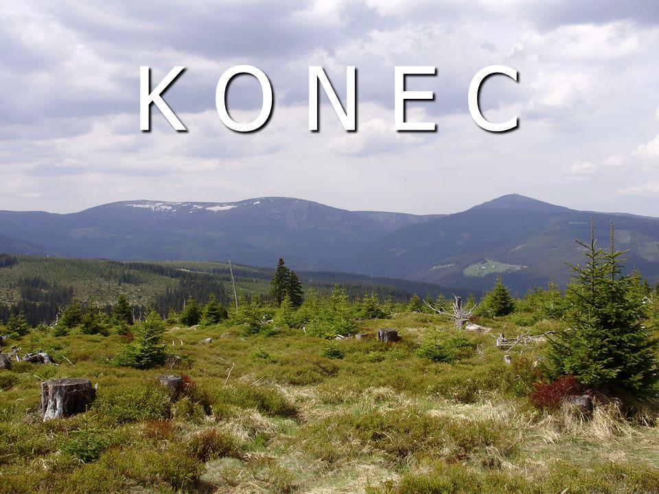 K O N E C