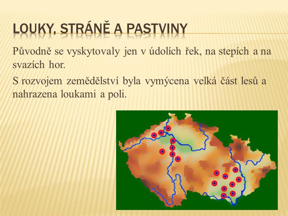 Původně se vyskytovaly jen v údolích řek, na stepích a na svazích hor. S rozvojem zemědělství byla vymýcena velká část lesů a nahrazena loukami a poli
