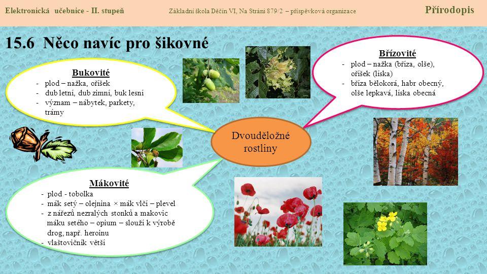 15.7 CLIL Elektronická učebnice - II.