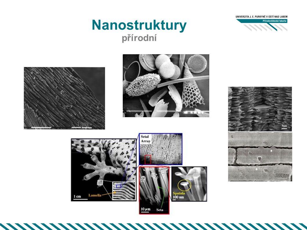 Nanostruktury přírodní