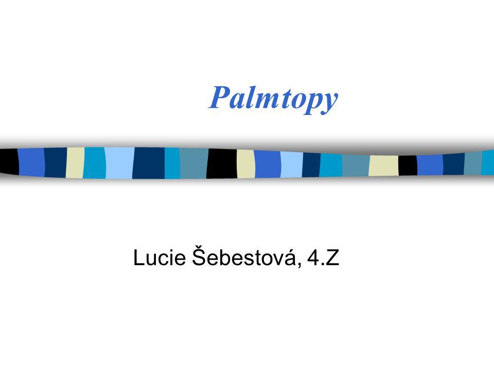 Palmtopy Lucie Šebestová, 4.Z