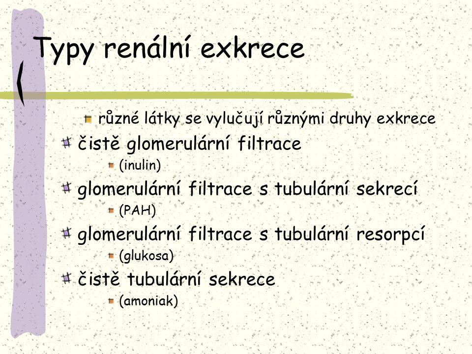 Typy renální exkrece různé látky se vylučují různými druhy exkrece čistě glomerulární filtrace (inulin) glomerulární filtrace s tubulární sekrecí (PAH