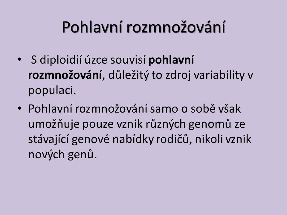 Pohlavní rozmnožování S diploidií úzce souvisí pohlavní rozmnožování, důležitý to zdroj variability v populaci.