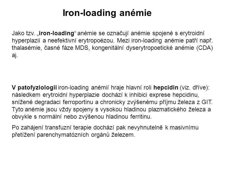 Iron-loading anémie Jako tzv.