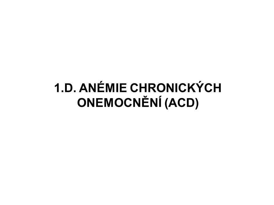 1.D. ANÉMIE CHRONICKÝCH ONEMOCNĚNÍ (ACD)