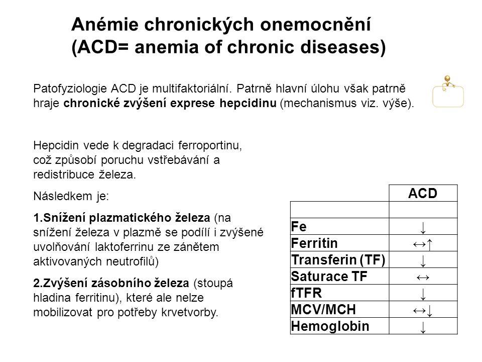 Anémie chronických onemocnění (ACD= anemia of chronic diseases) Patofyziologie ACD je multifaktoriální.