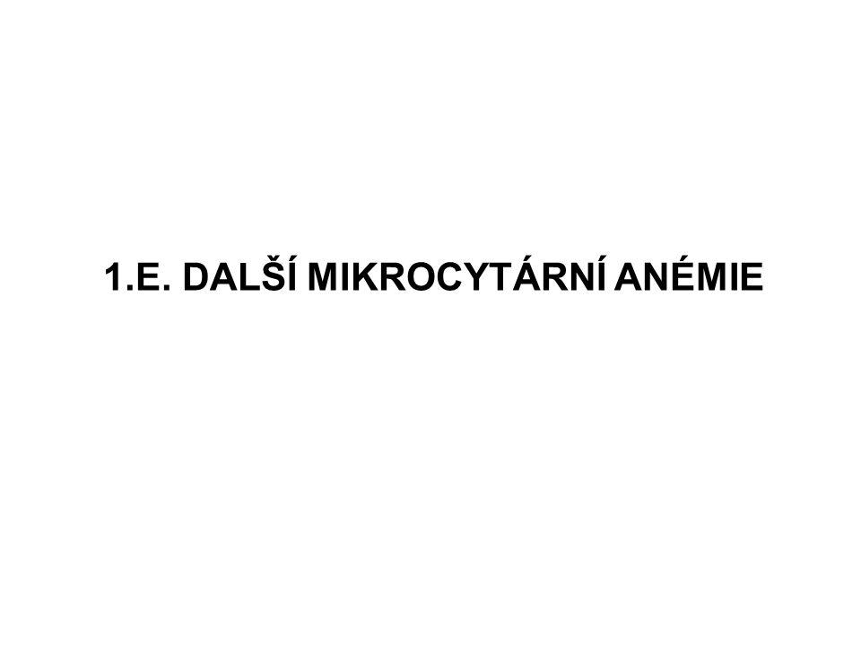 1.E. DALŠÍ MIKROCYTÁRNÍ ANÉMIE