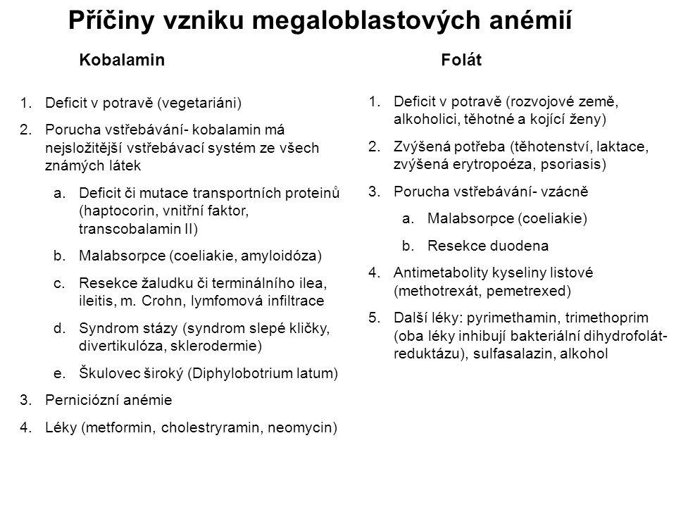 Příčiny vzniku megaloblastových anémií 1.Deficit v potravě (vegetariáni) 2.Porucha vstřebávání- kobalamin má nejsložitější vstřebávací systém ze všech známých látek a.Deficit či mutace transportních proteinů (haptocorin, vnitřní faktor, transcobalamin II) b.Malabsorpce (coeliakie, amyloidóza) c.Resekce žaludku či terminálního ilea, ileitis, m.