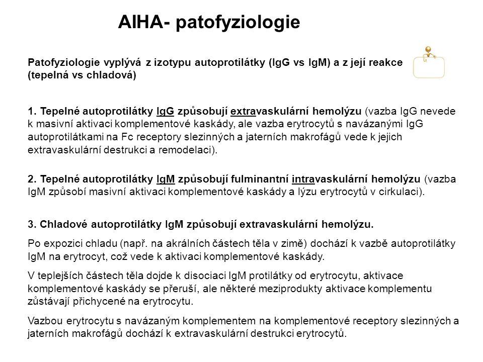 AIHA- patofyziologie 1.