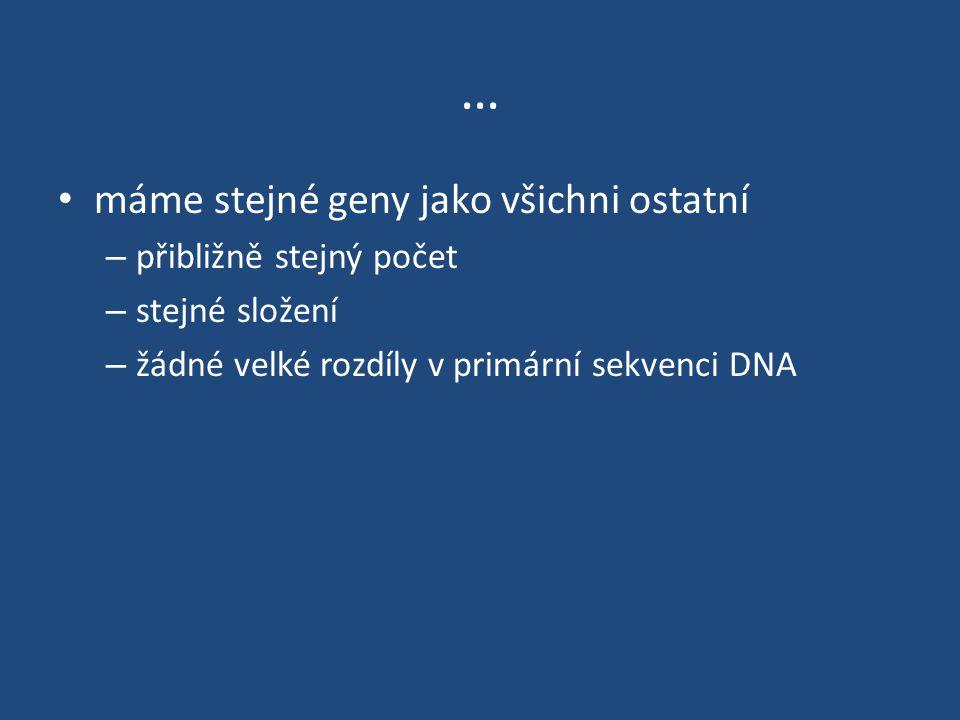 … máme stejné geny jako všichni ostatní – přibližně stejný počet – stejné složení – žádné velké rozdíly v primární sekvenci DNA