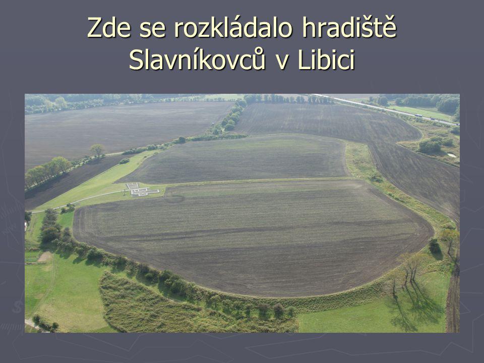 Zde se rozkládalo hradiště Slavníkovců v Libici