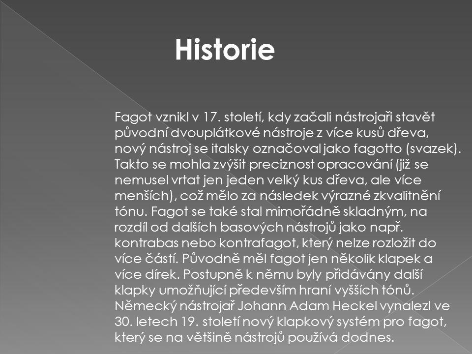 Fagot vznikl v 17. století, kdy začali nástrojaři stavět původní dvouplátkové nástroje z více kusů dřeva, nový nástroj se italsky označoval jako fagot