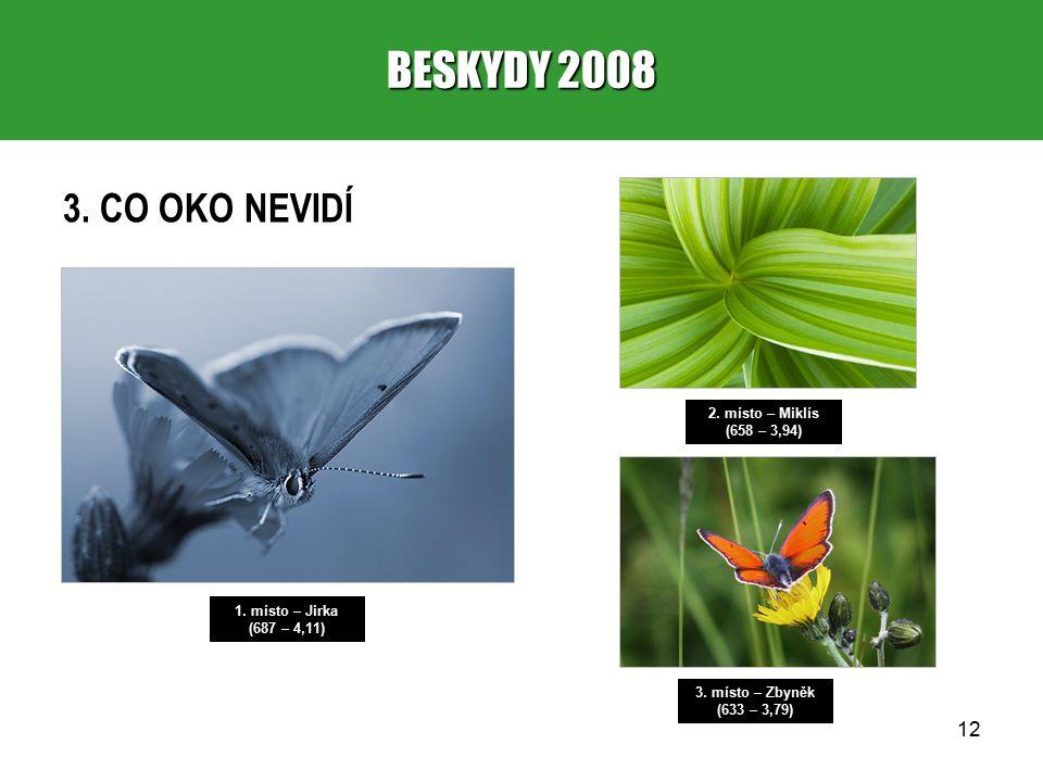 12 BESKYDY 2008 3. CO OKO NEVIDÍ 1. místo – Jirka (687 – 4,11) 2.
