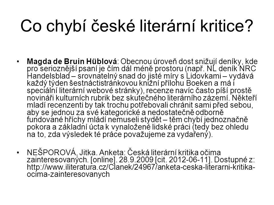 Co chybí české literární kritice.