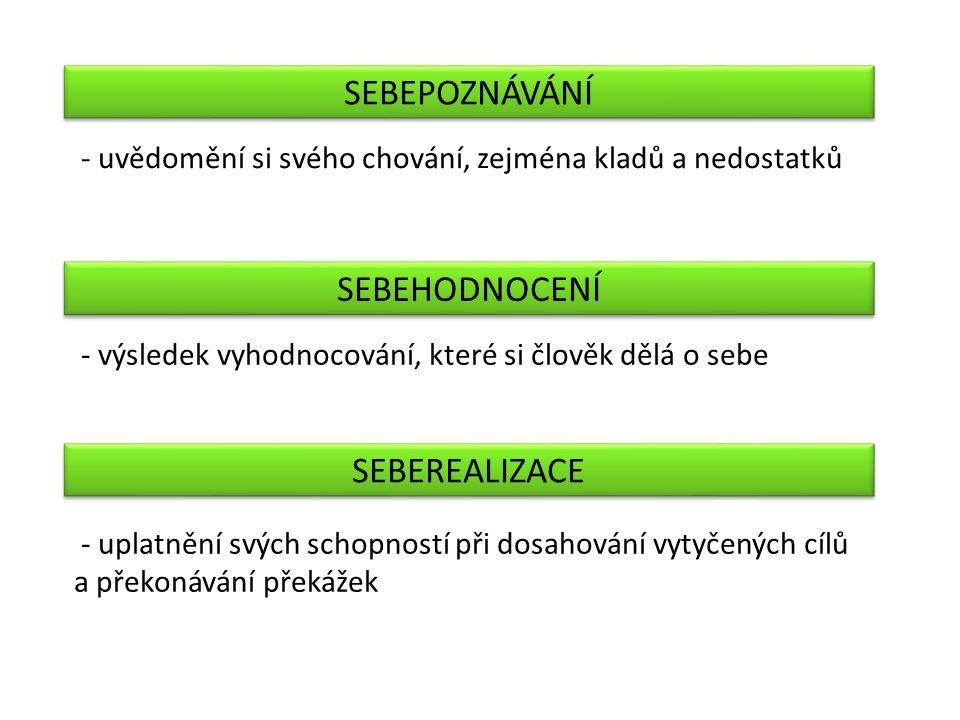 Janošková, D., Ondráčková, M., Čábalová, D., Marková, H., Šebková, J.