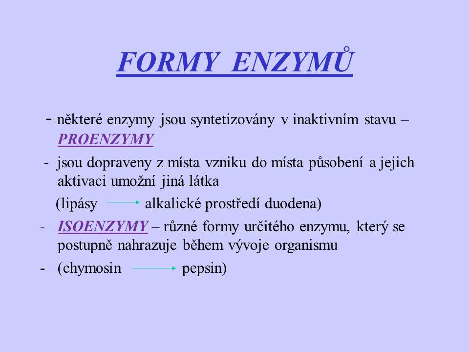 FORMY ENZYMŮ - některé enzymy jsou syntetizovány v inaktivním stavu – PROENZYMY - jsou dopraveny z místa vzniku do místa působení a jejich aktivaci um