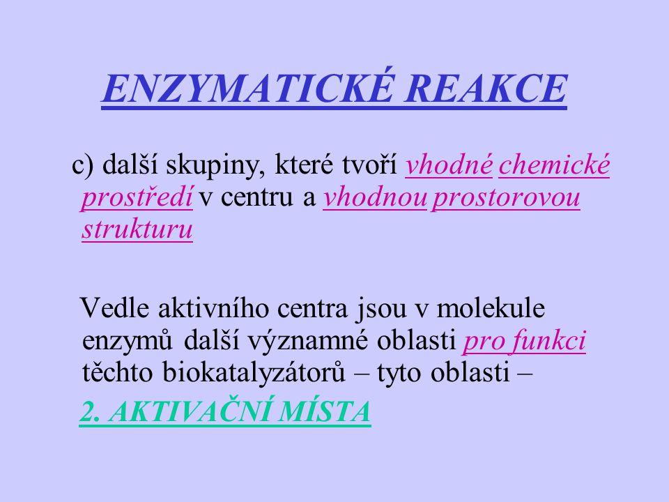ENZYMATICKÉ REAKCE c) další skupiny, které tvoří vhodné chemické prostředí v centru a vhodnou prostorovou strukturu Vedle aktivního centra jsou v mole