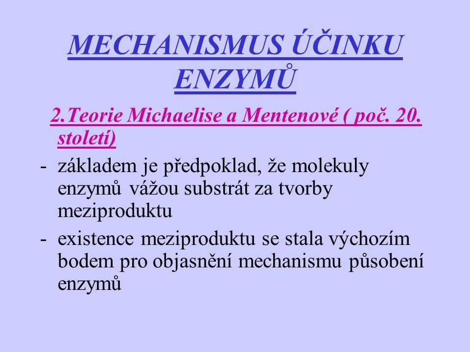 MECHANISMUS ÚČINKU ENZYMŮ 2.Teorie Michaelise a Mentenové ( poč. 20. století) -základem je předpoklad, že molekuly enzymů vážou substrát za tvorby mez
