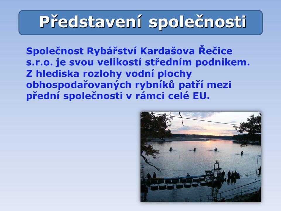 Společnost Rybářství Kardašova Řečice s.r.o.je svou velikostí středním podnikem.