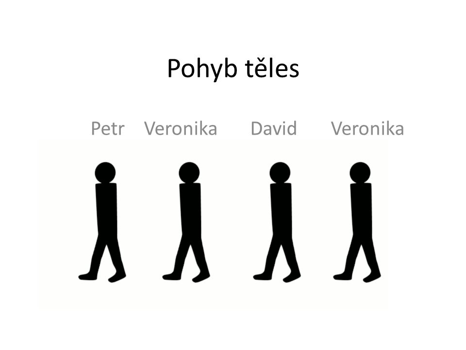 Pohyb těles Petr Veronika David Veronika