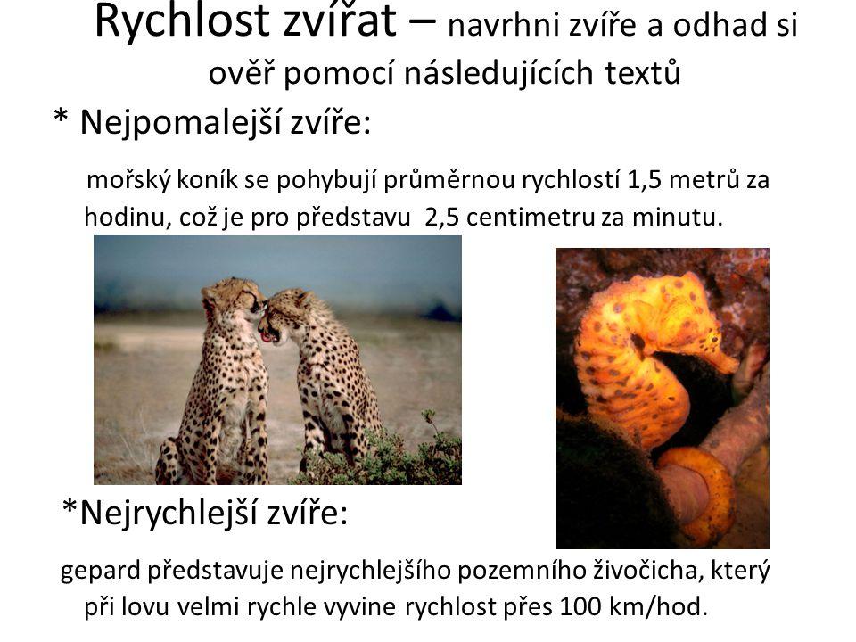 Rychlost zvířat – navrhni zvíře a odhad si ověř pomocí následujících textů * Nejpomalejší zvíře: mořský koník se pohybují průměrnou rychlostí 1,5 metrů za hodinu, což je pro představu 2,5 centimetru za minutu.