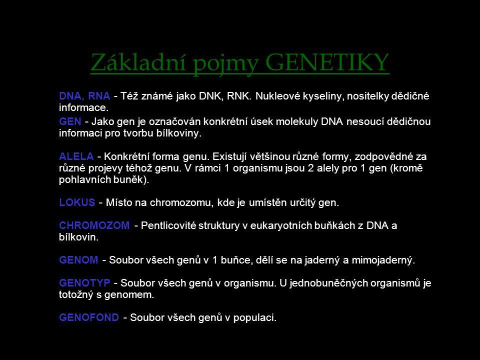 Základní pojmy GENETIKY DNA, RNA - Též známé jako DNK, RNK.
