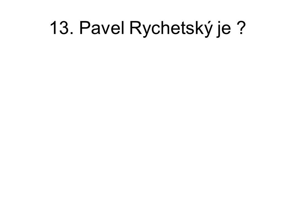 13. Pavel Rychetský je ?