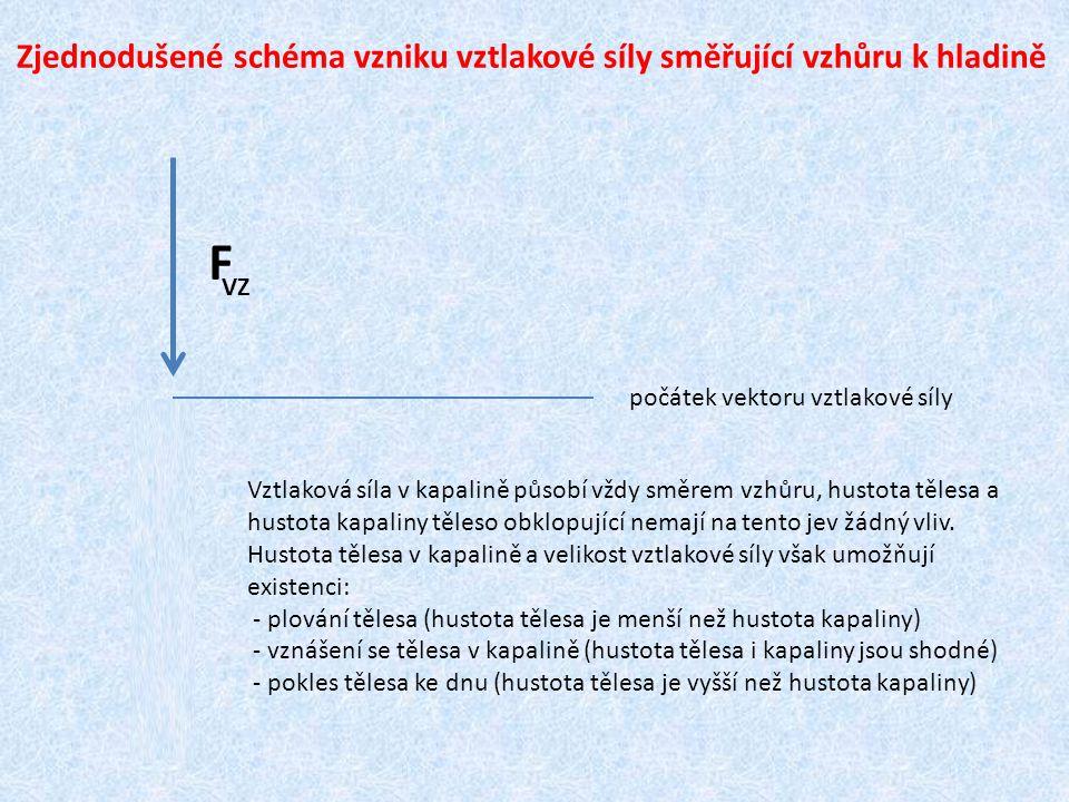 Zjednodušené schéma vzniku vztlakové síly směřující vzhůru k hladině F VZ F síla působící na dolní podstavu síla působící na horní podstavu počátek vektoru vztlakové síly Vztlaková síla v kapalině působí vždy směrem vzhůru, hustota tělesa a hustota kapaliny těleso obklopující nemají na tento jev žádný vliv.