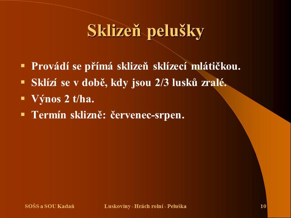 SOŠS a SOU KadaňLuskoviny - Hrách rolní - Peluška10 Sklizeň pelušky  Provádí se přímá sklizeň sklízecí mlátičkou.