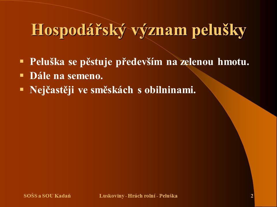 SOŠS a SOU KadaňLuskoviny - Hrách rolní - Peluška2 Hospodářský význam pelušky  Peluška se pěstuje především na zelenou hmotu.