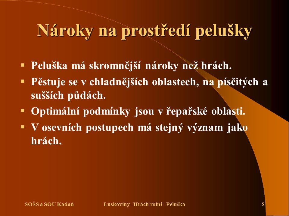 SOŠS a SOU KadaňLuskoviny - Hrách rolní - Peluška5 Nároky na prostředí pelušky  Peluška má skromnější nároky než hrách.