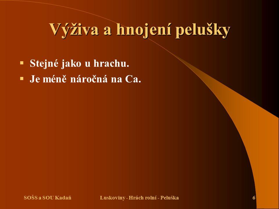SOŠS a SOU KadaňLuskoviny - Hrách rolní - Peluška6 Výživa a hnojení pelušky  Stejné jako u hrachu.