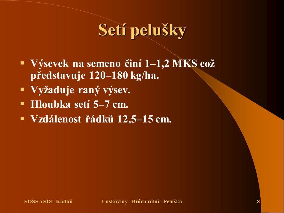 SOŠS a SOU KadaňLuskoviny - Hrách rolní - Peluška8 Setí pelušky  Výsevek na semeno činí 1–1,2 MKS což představuje 120–180 kg/ha.
