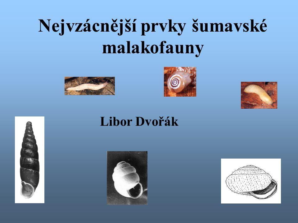 Nejvzácnější prvky šumavské malakofauny Libor Dvořák