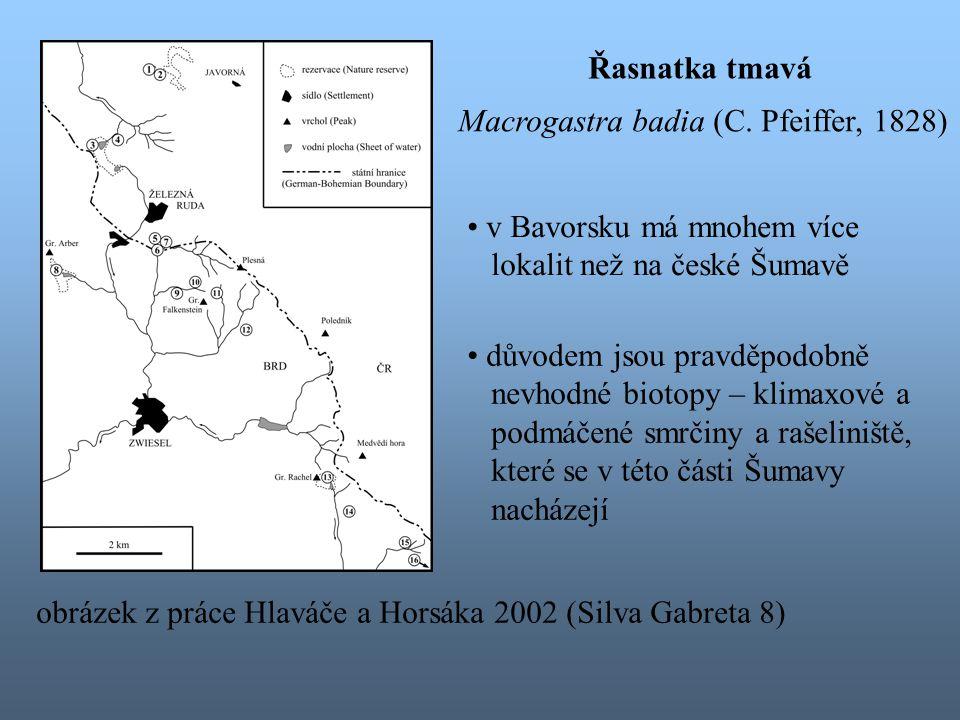 v Bavorsku má mnohem více lokalit než na české Šumavě důvodem jsou pravděpodobně nevhodné biotopy – klimaxové a podmáčené smrčiny a rašeliniště, které se v této části Šumavy nacházejí Řasnatka tmavá Macrogastra badia (C.