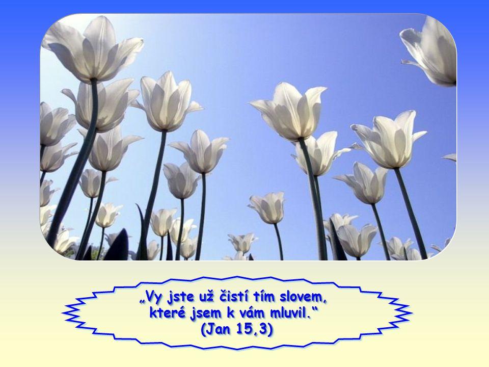 Slovo života Slovo života duben 2012 duben 2012
