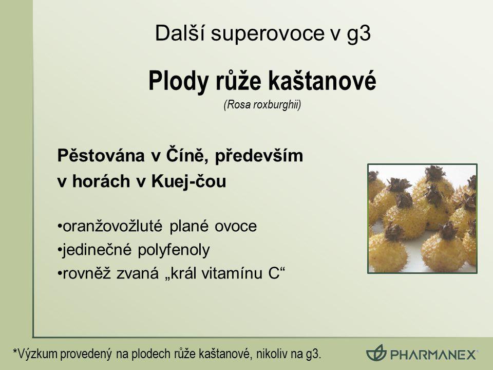 """Pěstována v Číně, především v horách v Kuej-čou oranžovožluté plané ovoce jedinečné polyfenoly rovněž zvaná """"král vitamínu C"""" Další superovoce v g3 *V"""