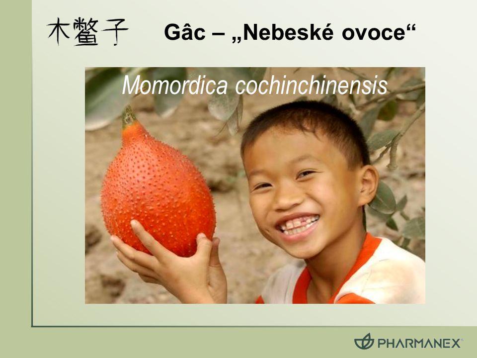 "Gâc – ""Nebeské ovoce"" Momordica cochinchinensis"