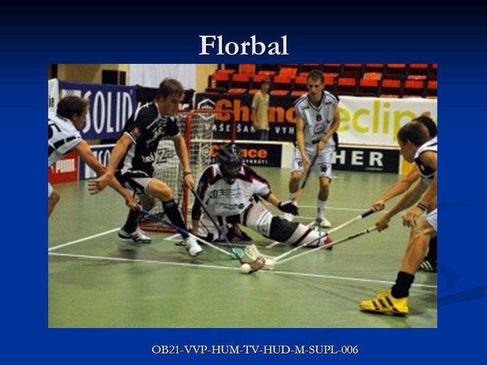 Florbal Kolektivní sportovní hra Kolektivní sportovní hra Družstvo tvoří 5 hráčů + brankář Družstvo tvoří 5 hráčů + brankář Hra se hraje s umělými florbalovými holemi Hra se hraje s umělými florbalovými holemi Bílý,dutý, dírkovaný, plastový míček Bílý,dutý, dírkovaný, plastový míček