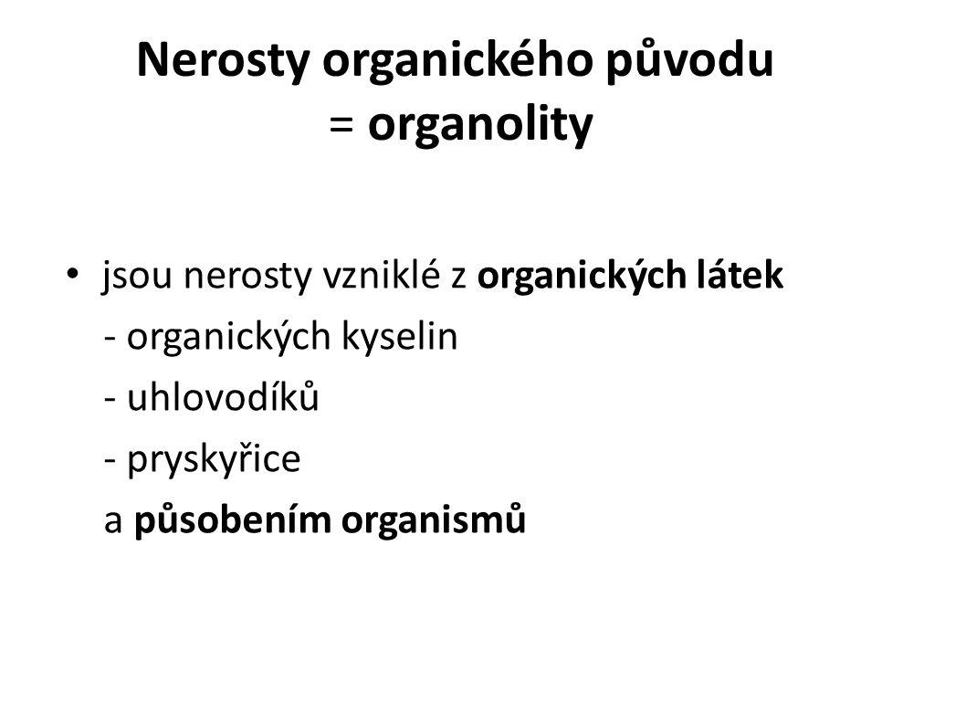 Nerosty organického původu = organolity jsou nerosty vzniklé z organických látek - organických kyselin - uhlovodíků - pryskyřice a působením organismů